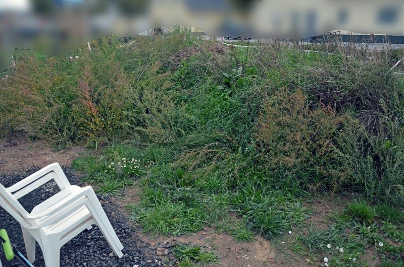 Garten vorm Planieren (Ostseite Mitte)