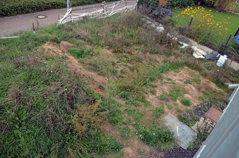 Garten vorm Planieren (Westseite)