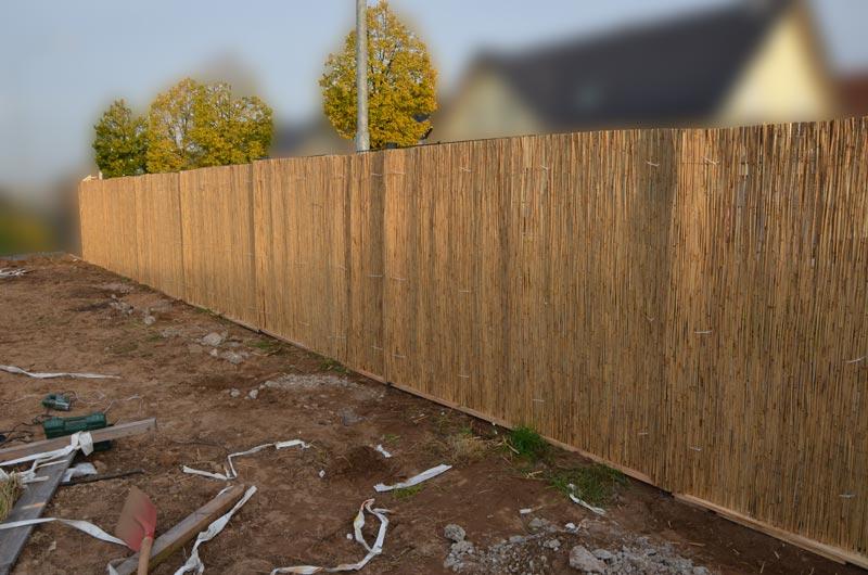 Zaun mit Schilfrohrmatte Westsicht