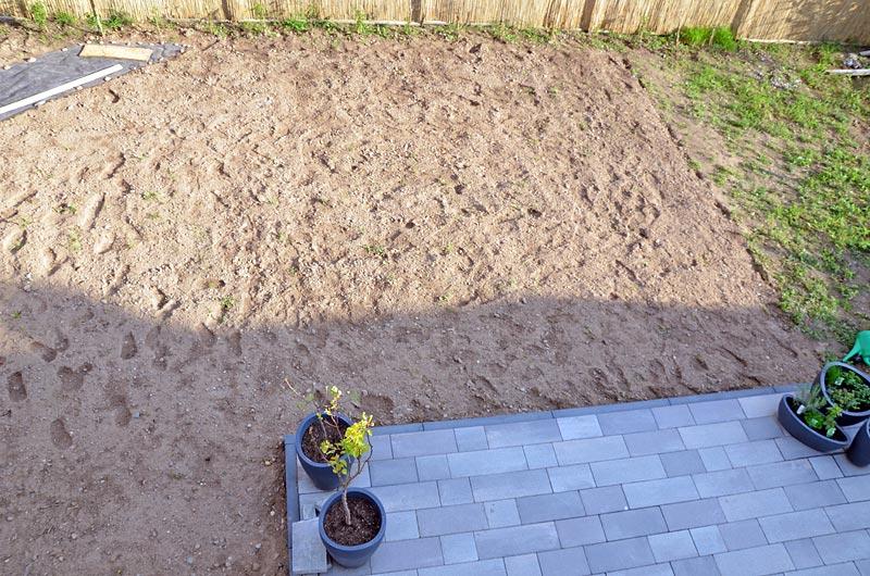 Garten mit gesäter Bauerngarten-Mischung Balkonsicht, rechts unbearbeiteter Streifen