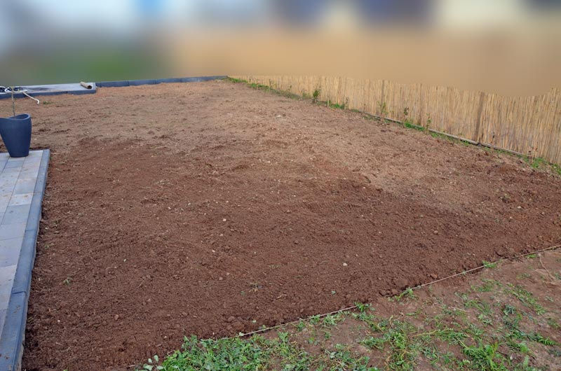 Garten-Gesamtfläche gejätet, gesät, gewässert