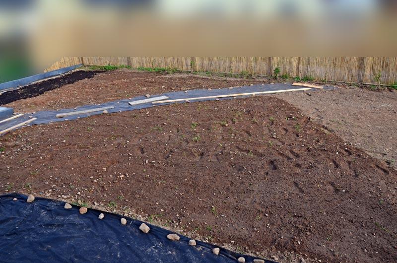 Garten nach dem Jäten, gesät und gewässert